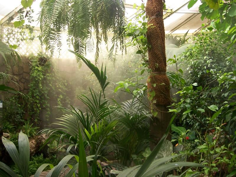 humidificación ambientes madrid